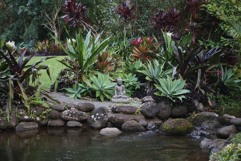 Tropical pond Hawaii buddha lava stone