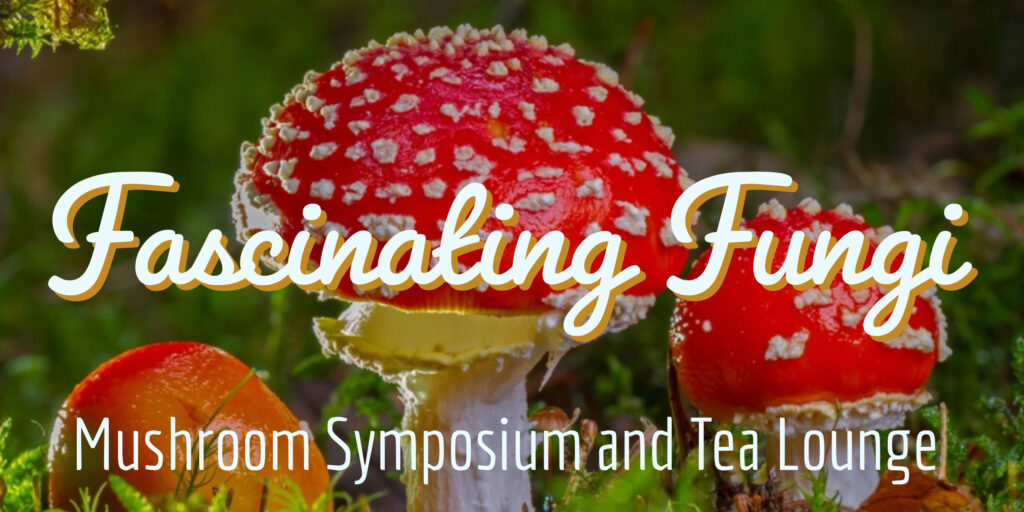 Fascinating fungi mushroom symposium and tea lounge
