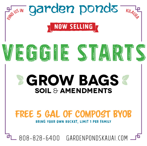 Free Compost, Veggie Starts, Soils and Amendments Available Now