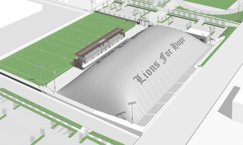 Field and dome rendering