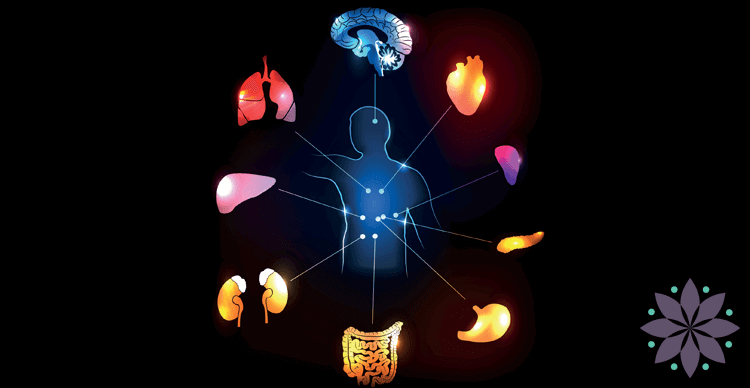 12 Areas Acupuncture Helps