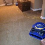 carpet air cleaning
