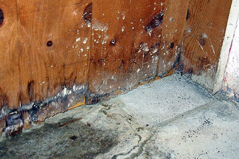 flooded basement water damage repair