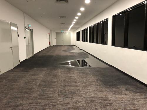 Flooded Carpet Restoration Salt Lake City