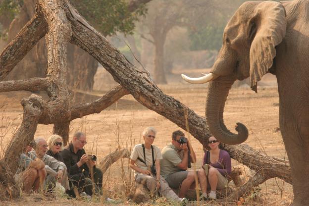 I:\Zimbabwe\Bushlife Safaris\Vundu Camp - July 2013\Vundu Camp Photographs\Movie\IMG_9356.JPG