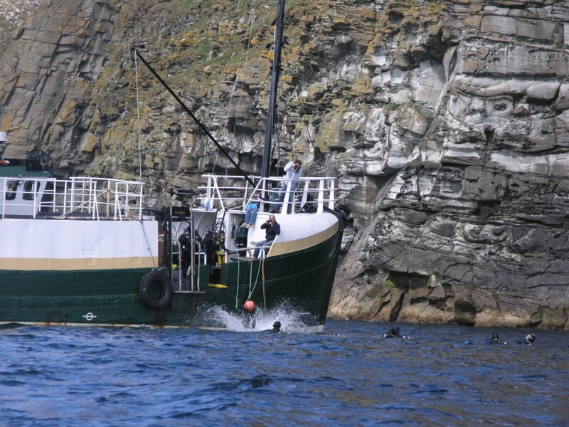 Snorkeling with Orcas in the Shetland Islands