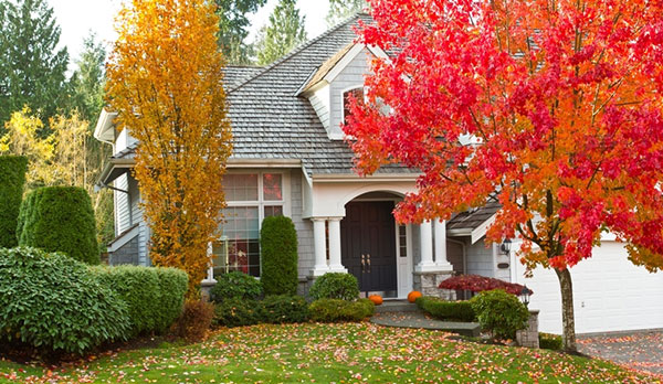 Tips to prep your house for fall