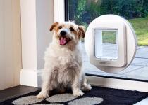 SureFlap Microchip Pet Door