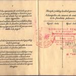 Banner_Chaja - Polish Passport (6)