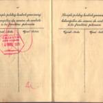 Banner_Chaja - Polish Passport (7)