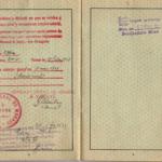 Zerkowitz_Georg - German Passport (5)