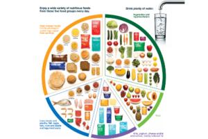 Children: Maintaining a well-balanced diet at Summer Camp