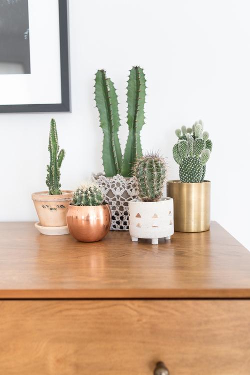 Style Trend: Desert Living Inspiration