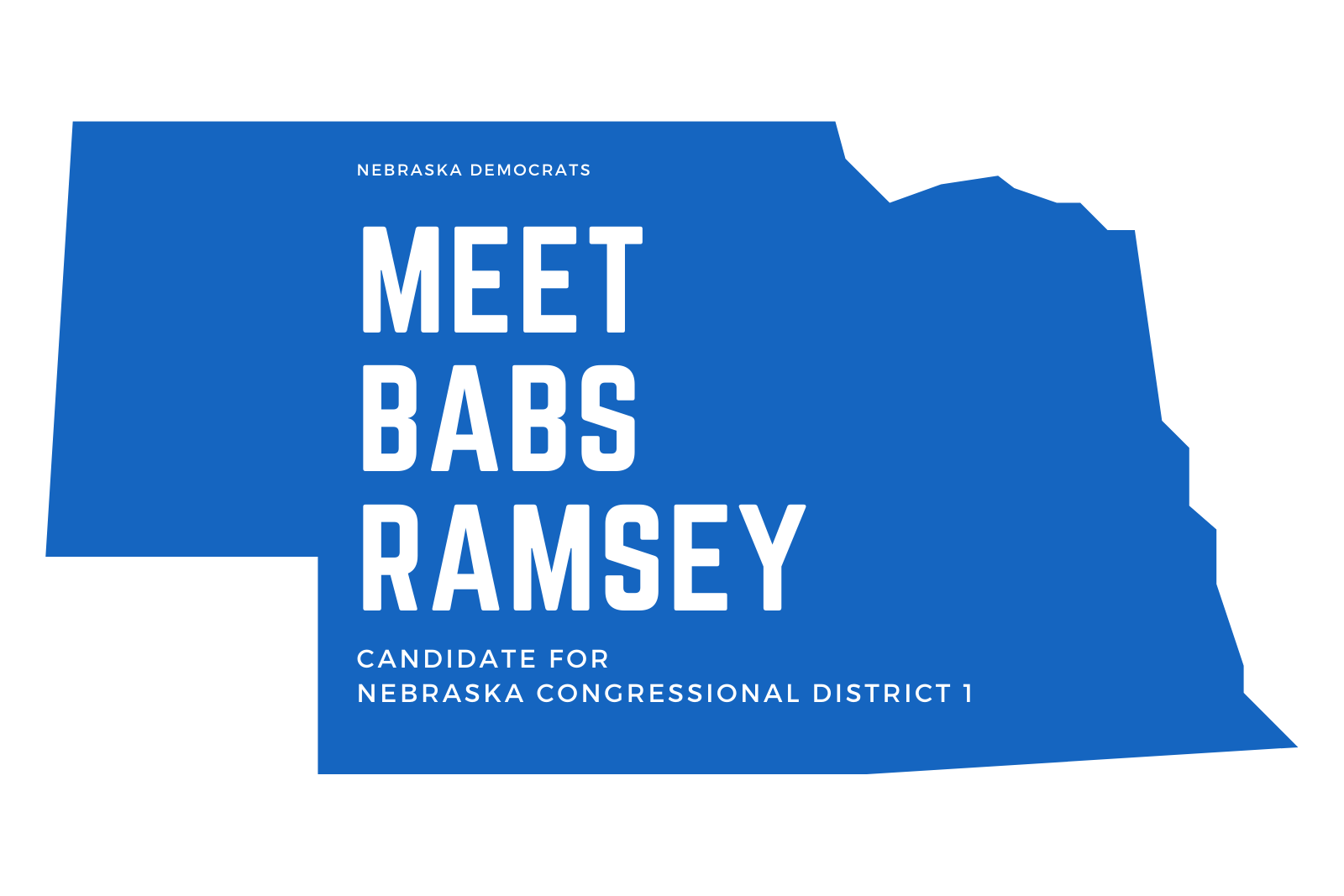 Meet Babs Ramsey, Candidate for NE Congressional District 1