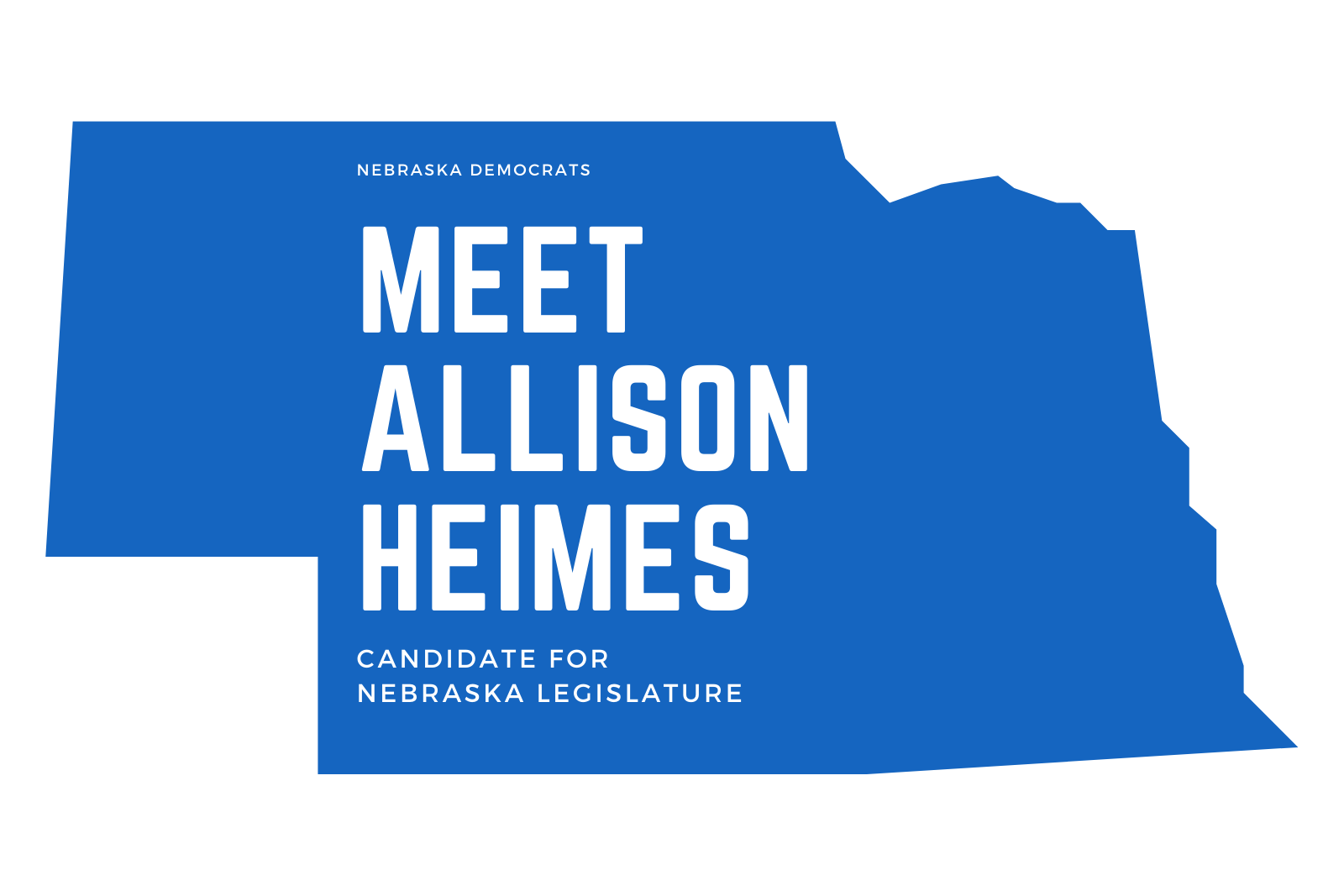 Meet Allison Heimes, Candidate for Nebraska State Legislature
