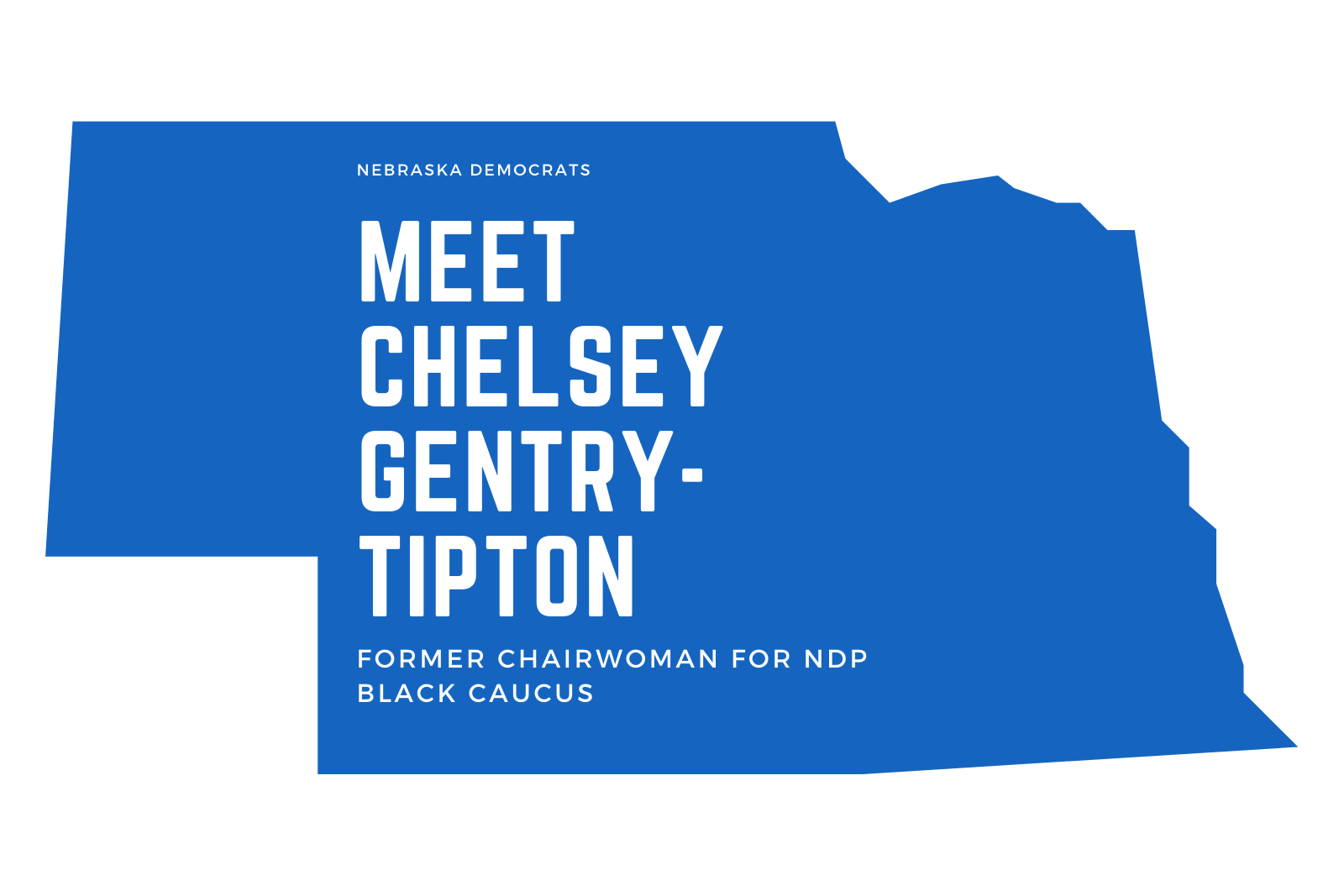 Ep. 25 Meet Chelsey Gentry-Tipton, Former Chairwoman of NDP Black Caucus