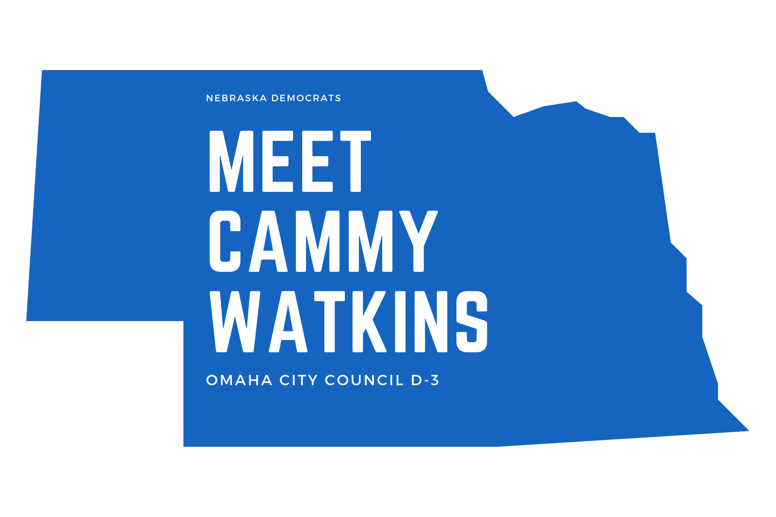 Ep. 34 Cammy Watkins for City Council District 3