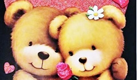 cuddle cold valentine 2