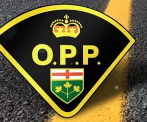 opp yellow line large