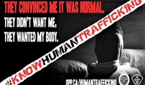 human trafficking sign front