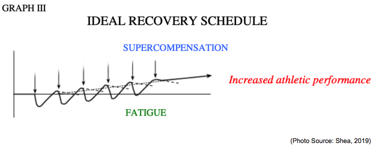 fitness recovery schedule for sailors