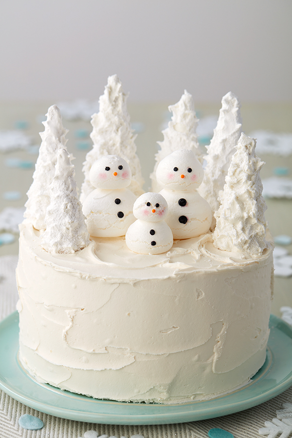 Fantastic 7 Winter Cakes For January Birthdays Wilton Funny Birthday Cards Online Alyptdamsfinfo