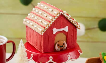 17 Cute Gingerbread House Ideas