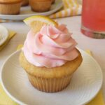 12 Fun Summer Cupcake Ideas