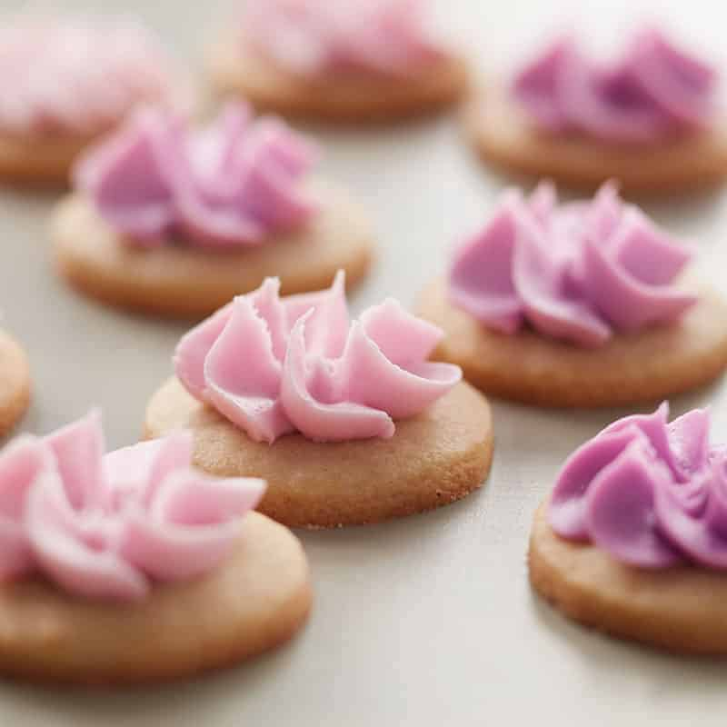 Round cookies with a simple swirl drop flower piped on top