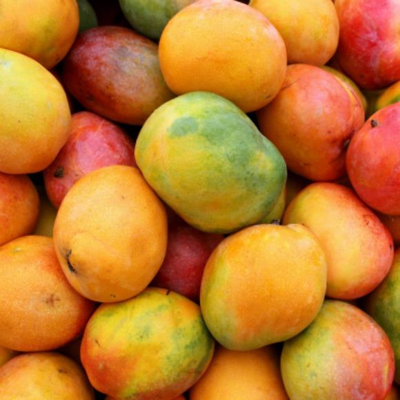 african-mango-recipes