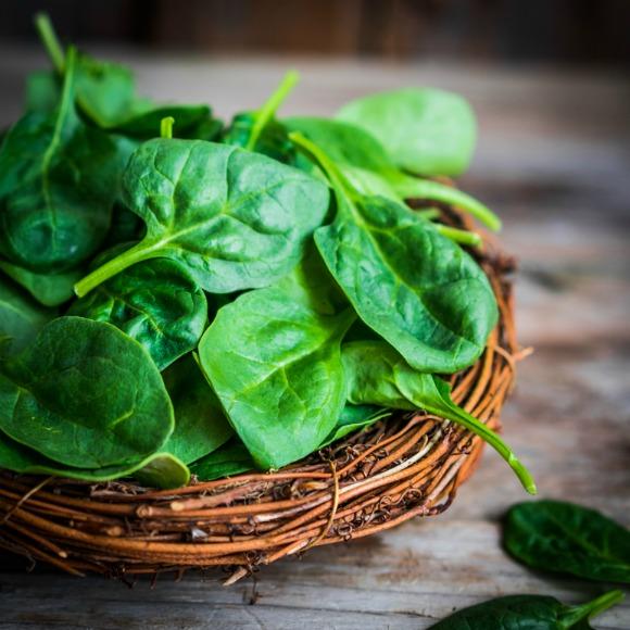 spinach recipes