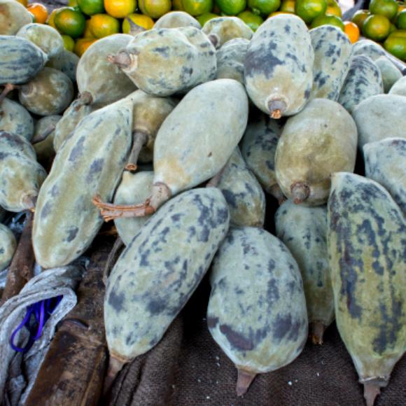 african-baobab-fruit-recipes