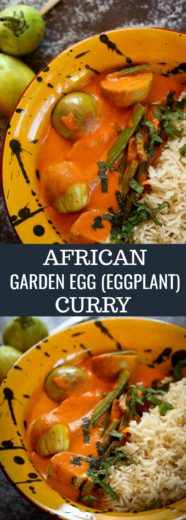 african-garden-egg-eggplant-curry