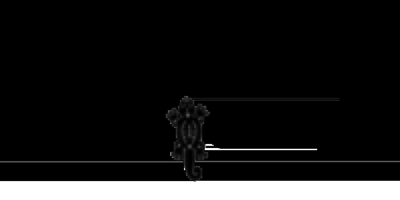 Concina Mexicana Logo 01 2