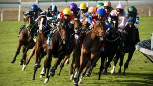 Ky derby 2021 online betting stevenhills mauritius betting odds