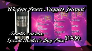 WISDOM POWER NUGGETS JOURNAL