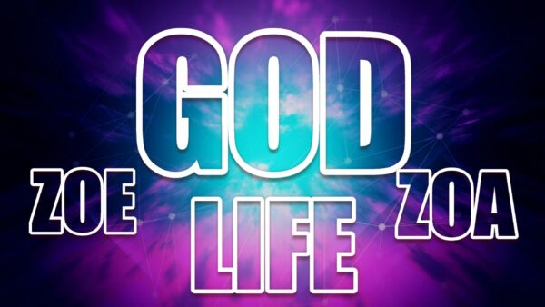 God Life Zoe Zao 10 CD's