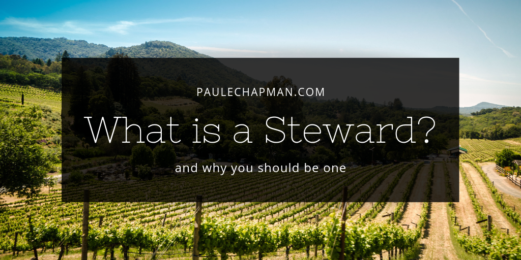 What is a Steward? and how to be a good one