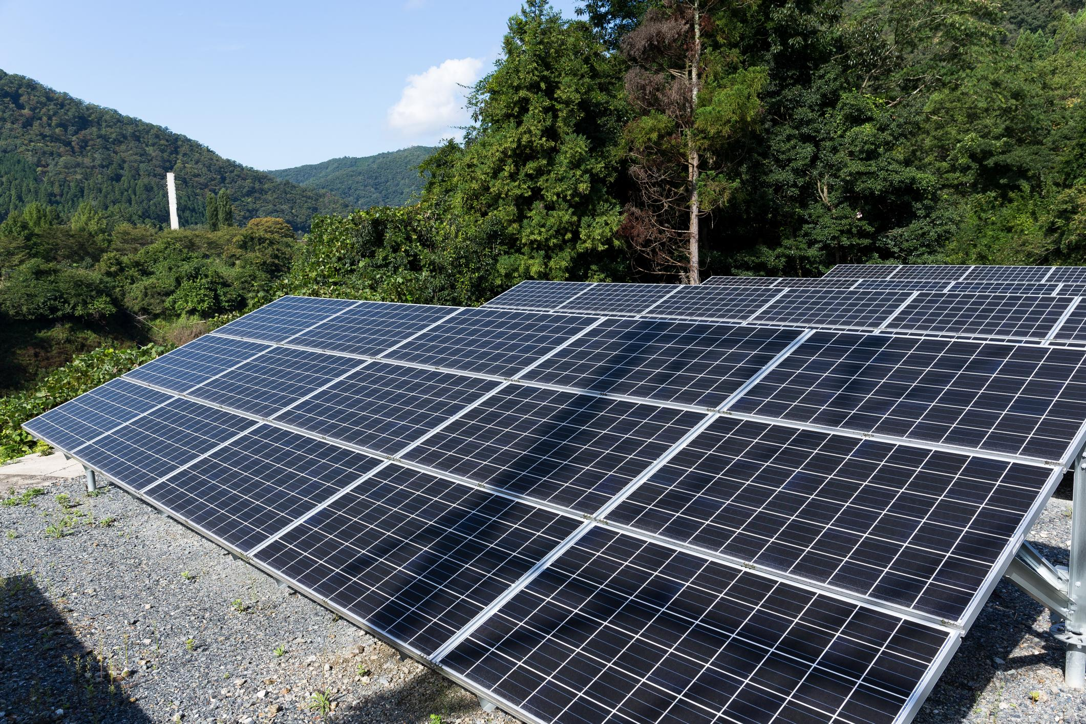 small field of solar panels