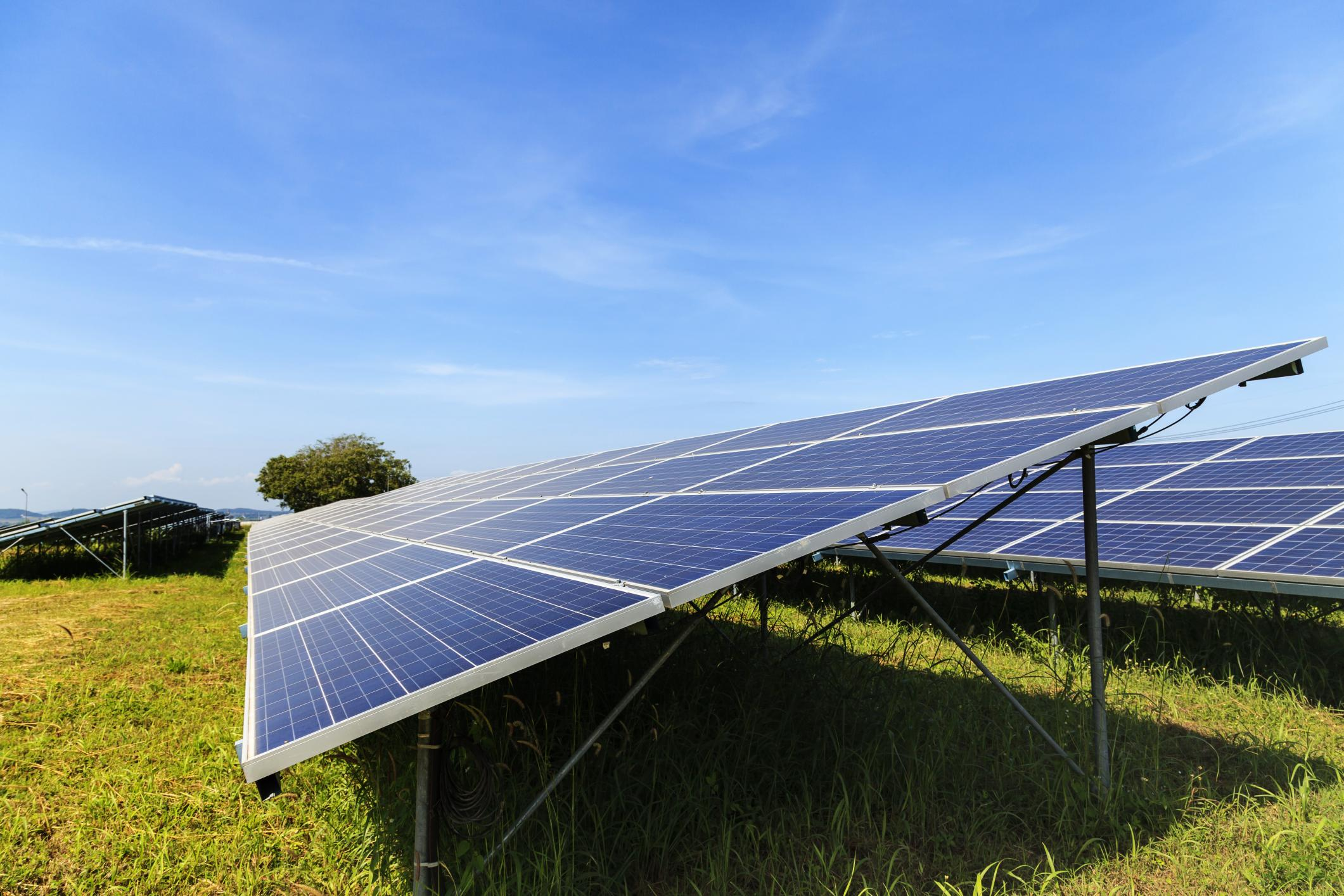 grass and solar panel