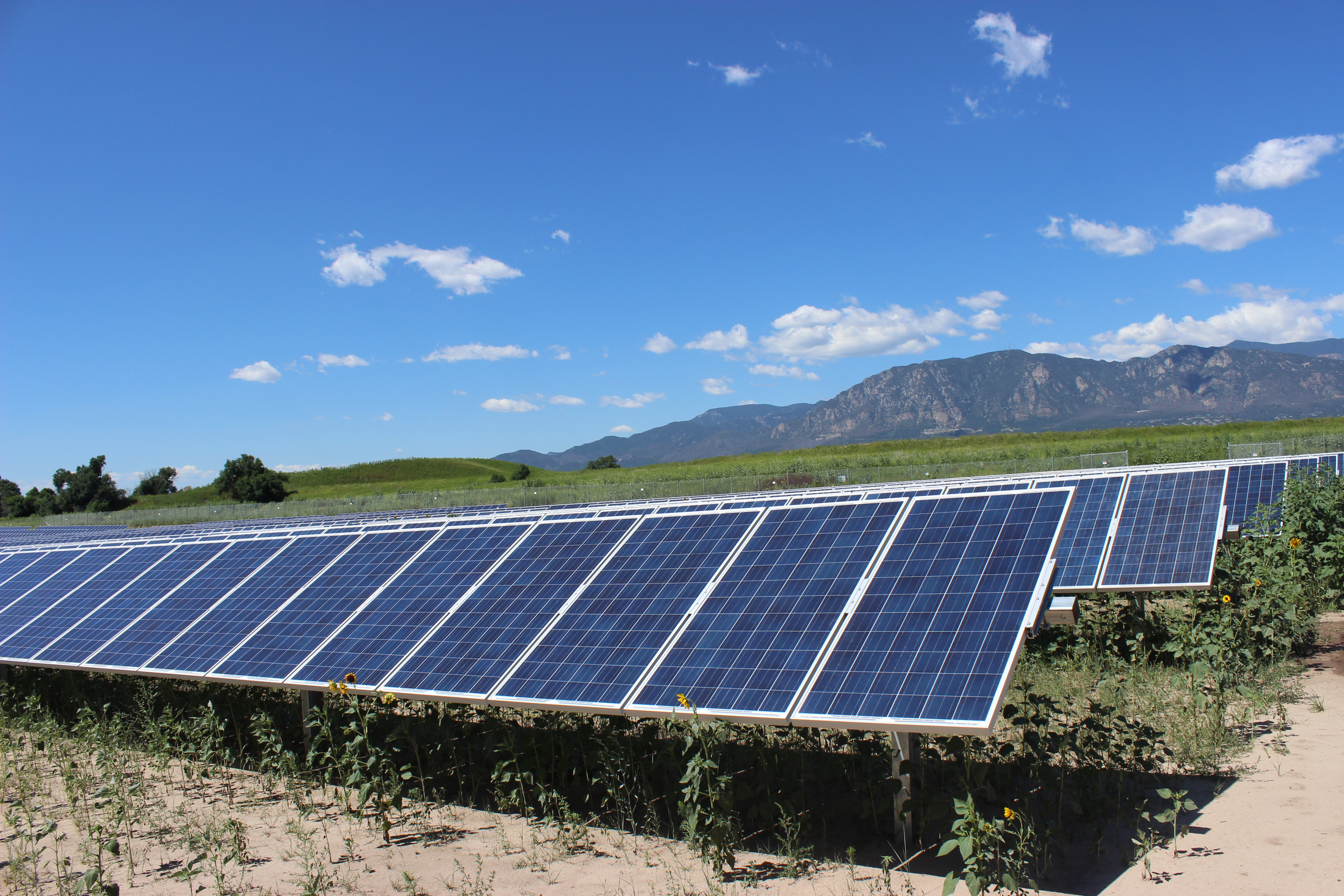 Solar panels in front of mountains