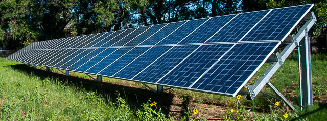 One solar panel by trees