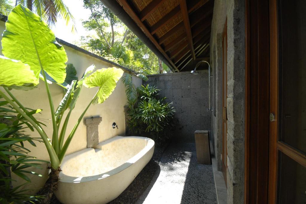 Luxury villas at San Benito Farm