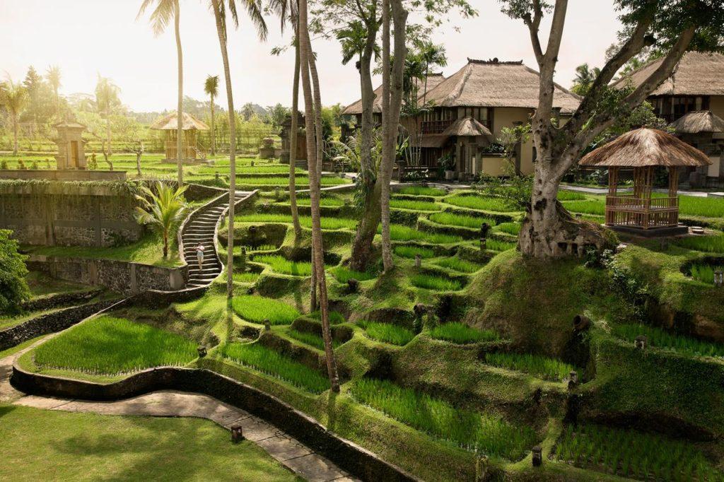 Top Ubud Hotels - Kamandalu