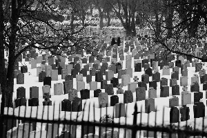 https://www.pexels.com/photo/graveyard-grave-stones-gravestones-graves-7911/