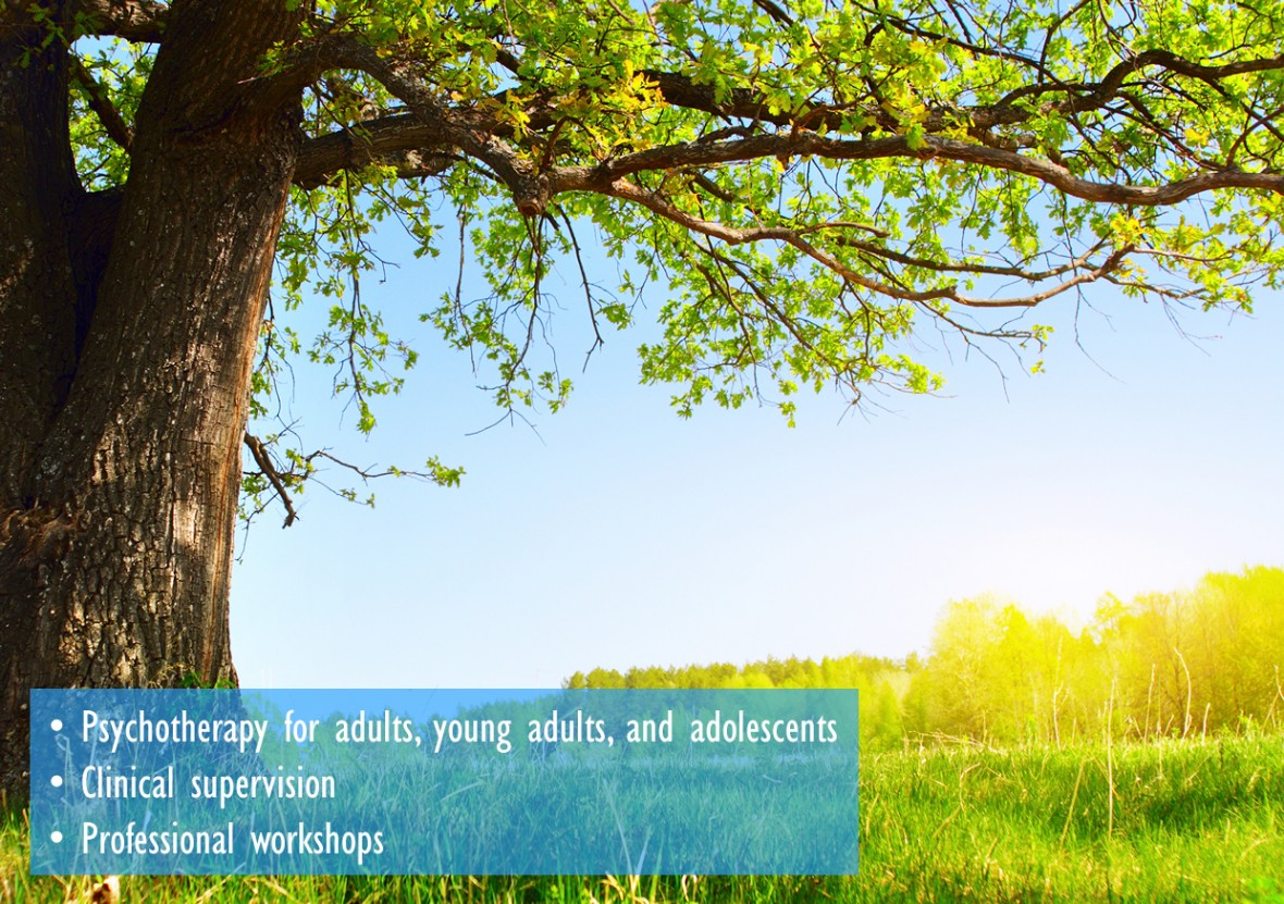 Psychotherapy for adults, young adults, and adolescents; Clinical supervision and professional workshops