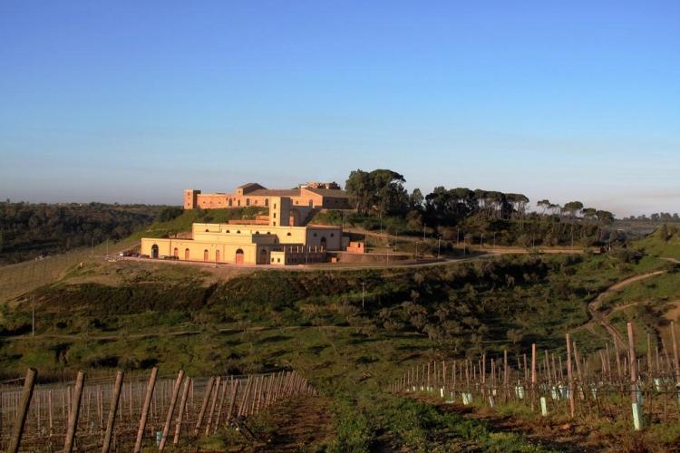 Feudi del Pisciotto - Niscemi (Caltanissetta area)