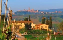 Agriturismo La Lucciolaia - San Gimignano 🏆