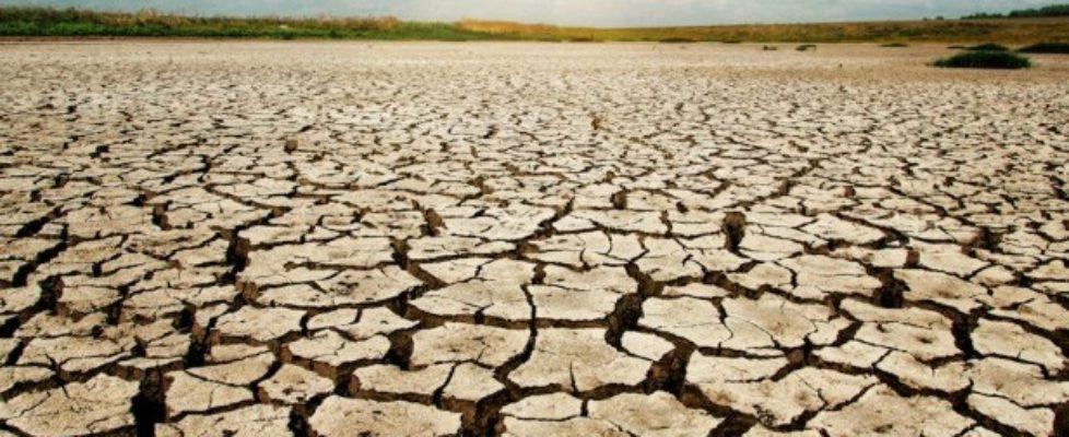 drought 617x416