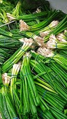Spring Onions 7 bunches for $1 at Super Best Asian Market